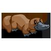 Platypus-icon