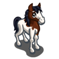 Abaco Barb Horse Foal-icon.png