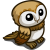 Barn Owl-icon
