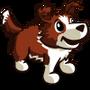 Bordercollie Puppy Red