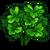 Cilantro-icon