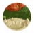 Daydream Island Stage 3-icon
