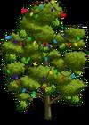 Durian Tree6-icon