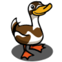 Indian Runner Duck-icon