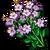 Thyme-icon