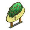 African Pear Tree Mastery Sign-icon