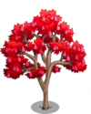 Australian Flame Tree2-icon
