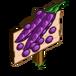 Purple Pod Peas
