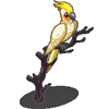 White Cockatiel-icon