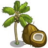 Coconut Tree-icon
