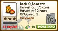 Jack O Lantern Market