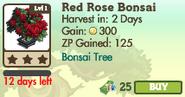 Red Rose Bonsai Tree Market Info (June 2012)