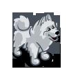Samoyed-icon