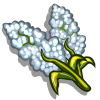 White Sorghum-icon
