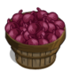 Onion Bushel-icon