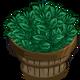 Black Tea Bushel-icon