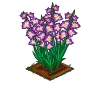 Perfect Gladiolus-icon