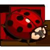 Giant Ladybug-icon
