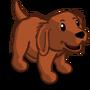 Golden Retriever Puppy Mahogany