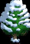 Jackfruit Tree7-icon