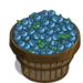 Super Chandler Blueberry Bushel-icon