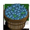 Super Chandler Blueberry Bushel-icon