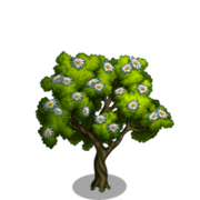 Edelweiss Tree-icon