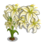Full Bloom White Lily-icon
