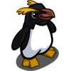 Fiordland Penguin-icon