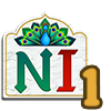 Namaste India Chapter 5 Quest 1-icon