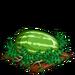 Super Watermelon 100