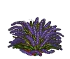 Wither Bunch Lavender-icon