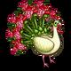 Bouquet Peacock-icon