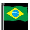 Brazil Flag-icon