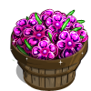 Butterfly Carnation Bushel-icon