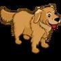 Golden Retriever-icon