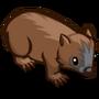 Wombat-icon