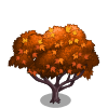 Amur Maple Tree-icon