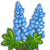 Blue Lupin-icon