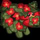 Scarlet Pigonia-icon