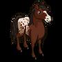Appaloosa-icon