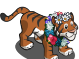 Earth Day Tiger