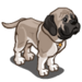 English Mastiff-icon