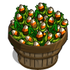Candied Corn (crop) Bushel-icon