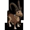 Ibex-icon