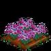 Lilac Daffy 100