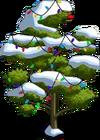 Durian Tree9-icon