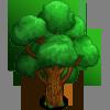 Loyal Oak Tree-icon