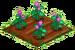 Munckin Flowers 66