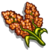 Red Sorghum-icon
